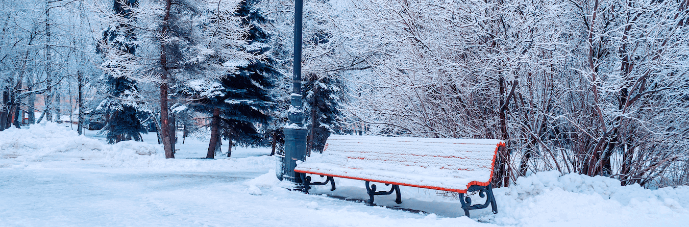 winter outdoor bench